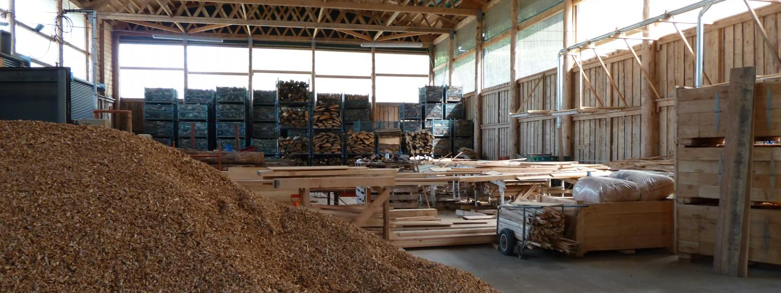 Timber processing at Esgair Forest, Machynlleth