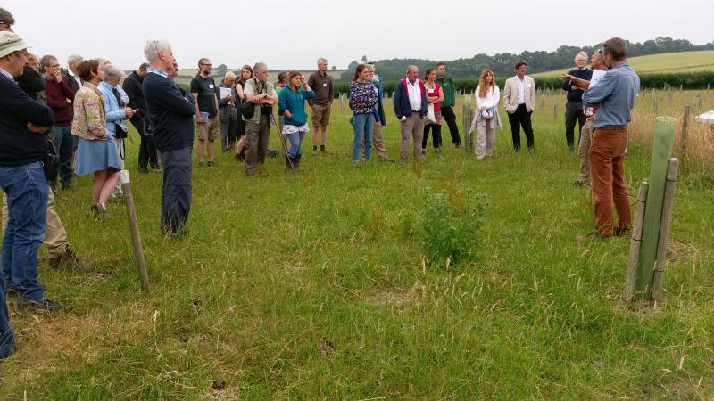 Allerton Project agroforestry